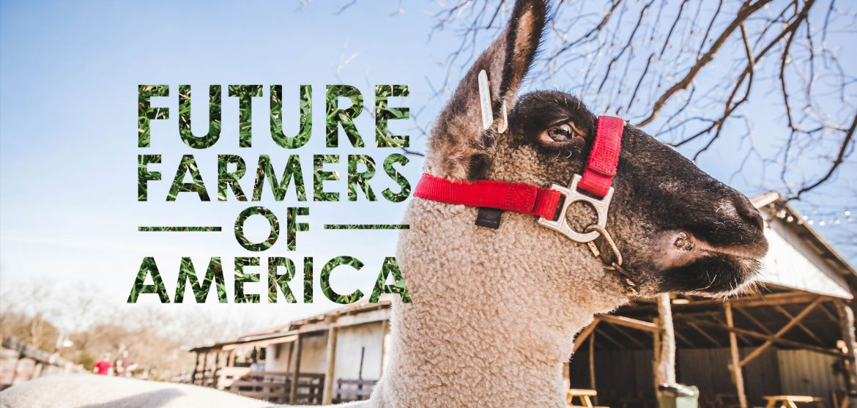 Future Farmers of American at Heritage Farmstead Museum - Plano Magazine - new farmers of america