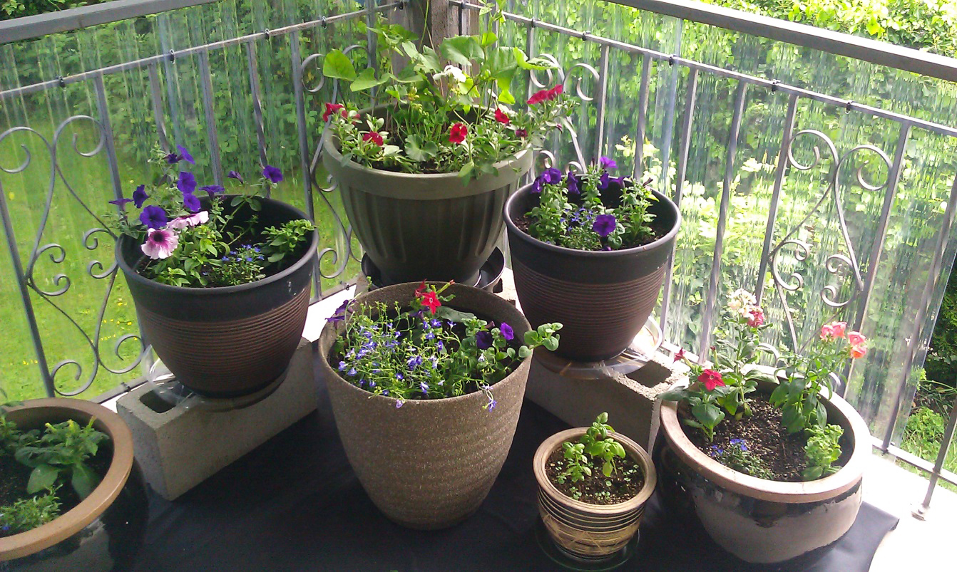 Unique Outdoor Flower Pots Ideas For Container Gardening Drip Irrigation For Pots Plant