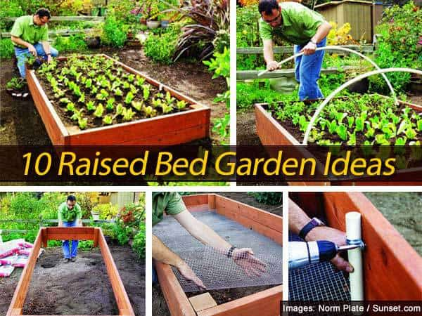 10 Raised Bed Garden Ideas - raised bed garden designs