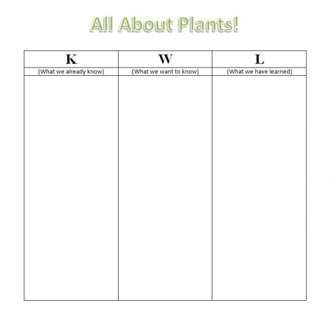 Kwl Chart Template Word KWL Chart - Food Chain Web-Based Inquiry