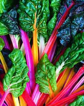 Swiss Chard Quesadillas Vegan Low Fat Gluten Free Plantiful Wellness