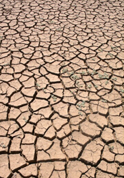 climate change dry land
