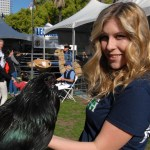 4-H and FFA members showed chickens, rabbits, pigs and other project animals.