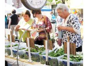 farmers_market_seniors