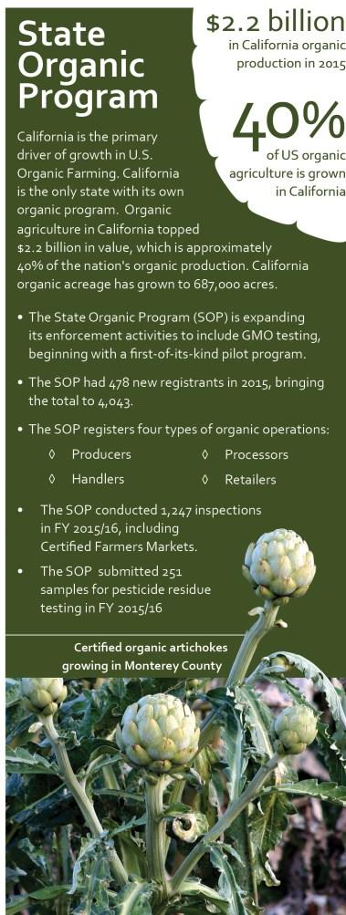 SOP infographic