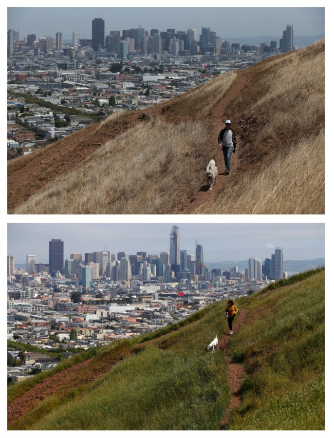 JULY 16, 2014: (TOP PHOTO) A woman walks her dog walker on a dried section of Bernal Heights Park in San Francisco. (Photo by Justin Sullivan/Getty Images)  APRIL 10, 2017: (BOTTOM PHOTO) A similar view at Bernal Heights Park.   Photo by Justin Sullivan/Getty Images)
