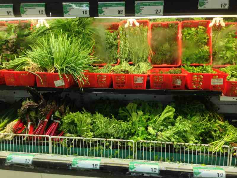 How to Store Your Herbs Properly