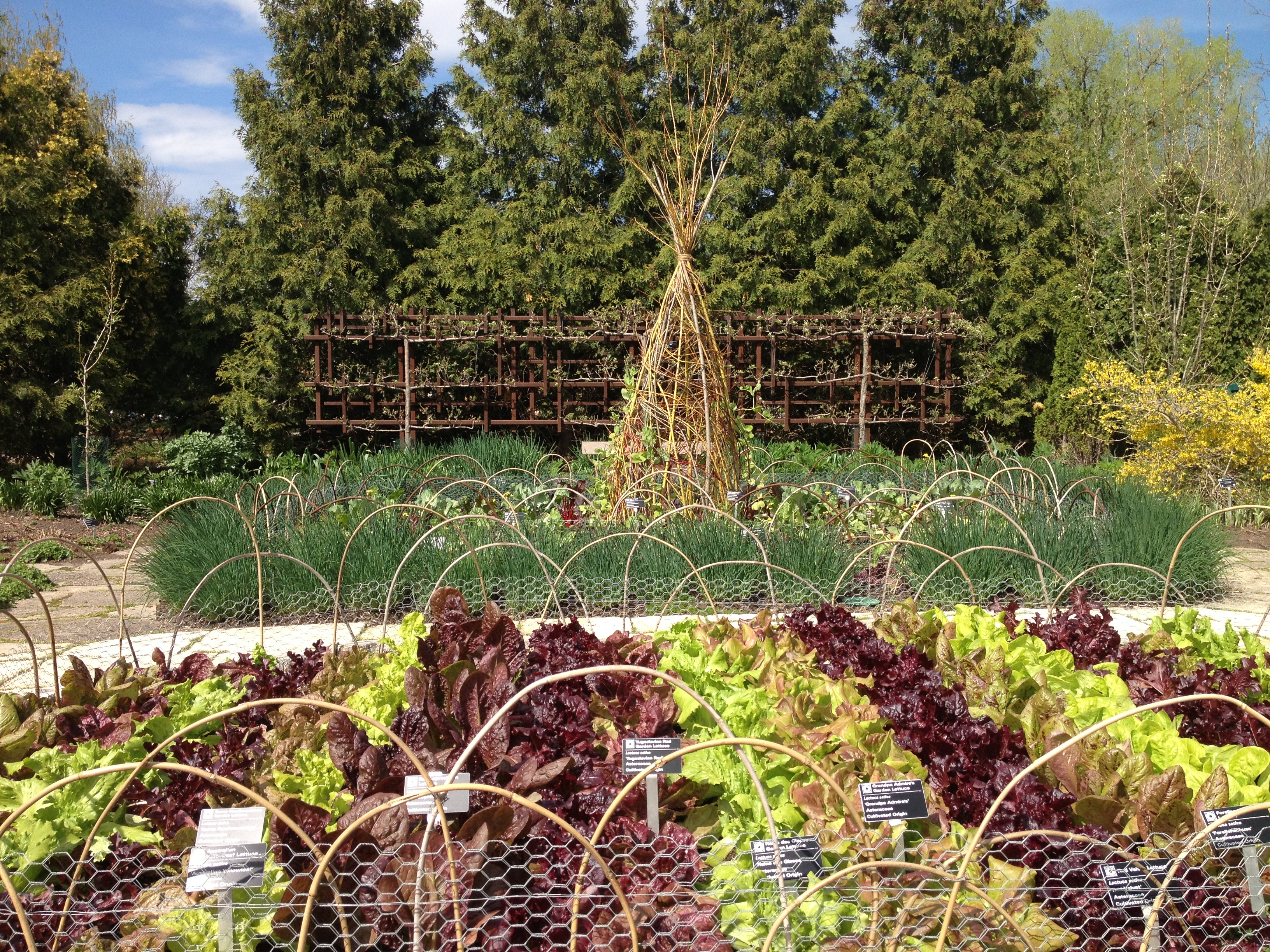Permaculture: New course encourages sustainability, efficiency