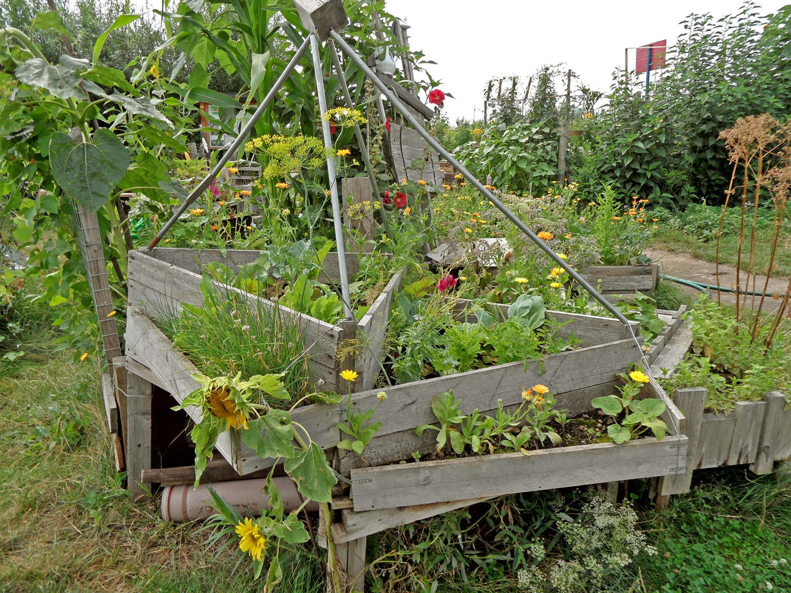 Hochbeet Planen Hochbeet Selber Bauen Vs Hochbeet Kaufen Plantura