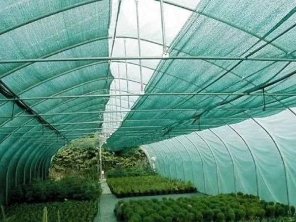 Agricultural Cultivation Shade Net For Greenhouse, One Plastic Netting In Agriculture