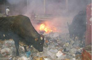 burning trash, Nepal