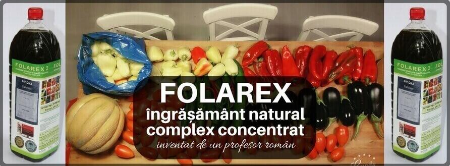 Invenția brevetată a unui profesor român revitalizează legumicultura cu 30%