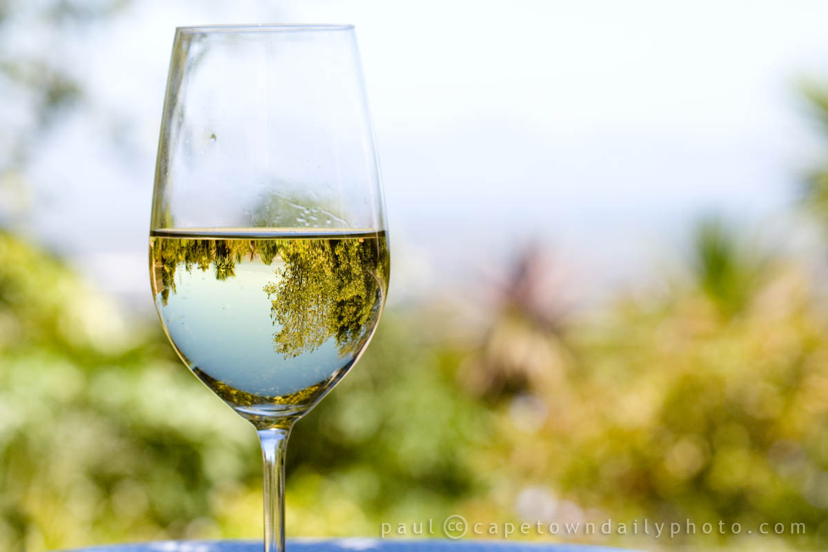 Chardonnay Wine Glass The Ins And Outs Of Wine Glasses Platypus Wine Tours Blog