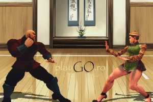 Joaca Perfect Fighter online