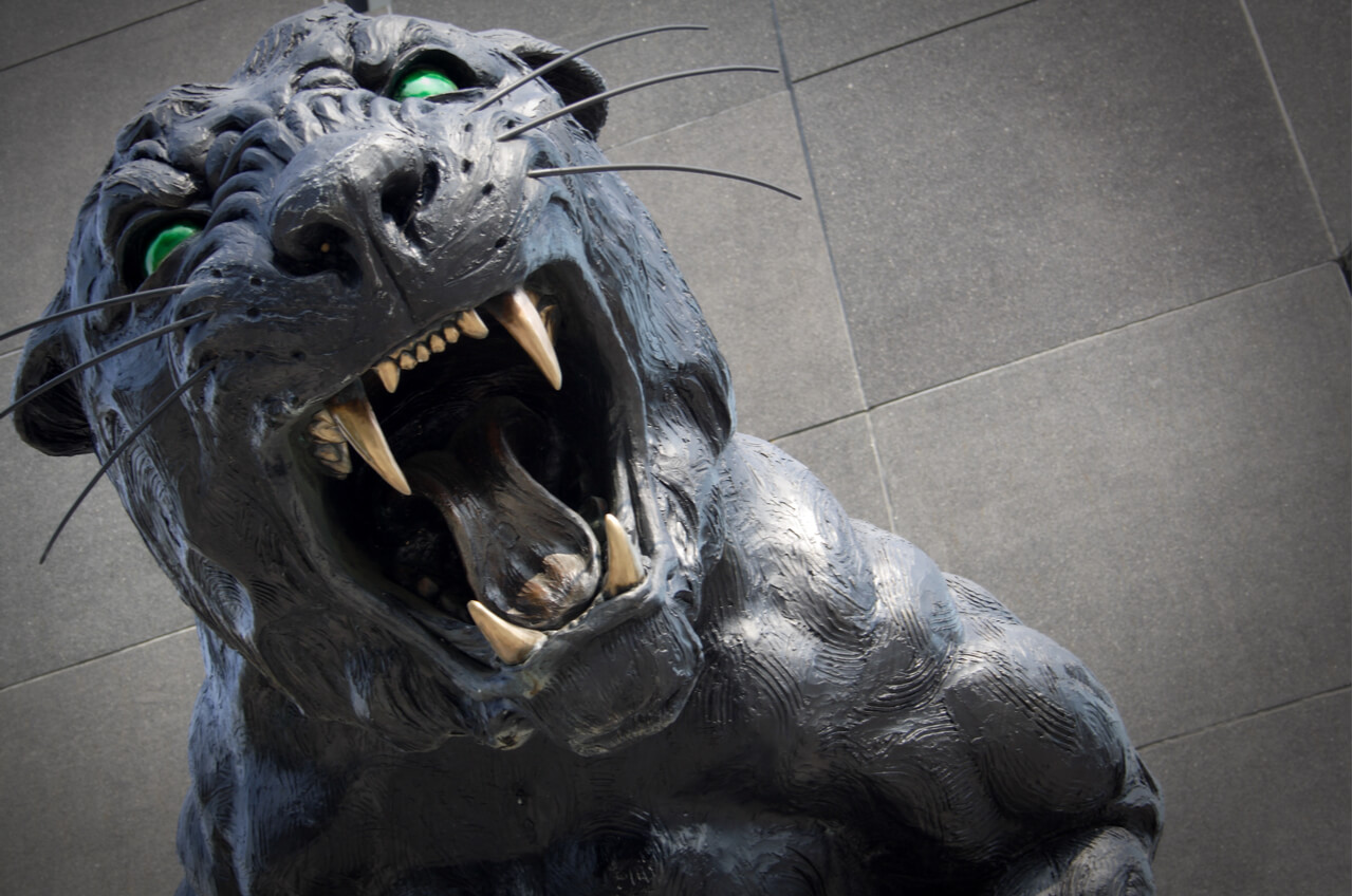 Panther Statue For Sale Potential Panthers Sale Puts Nfl 39s Gambling Problem In
