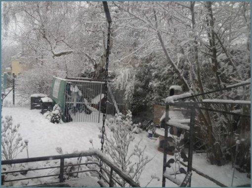 jardin-luisigomez-marzo-2013