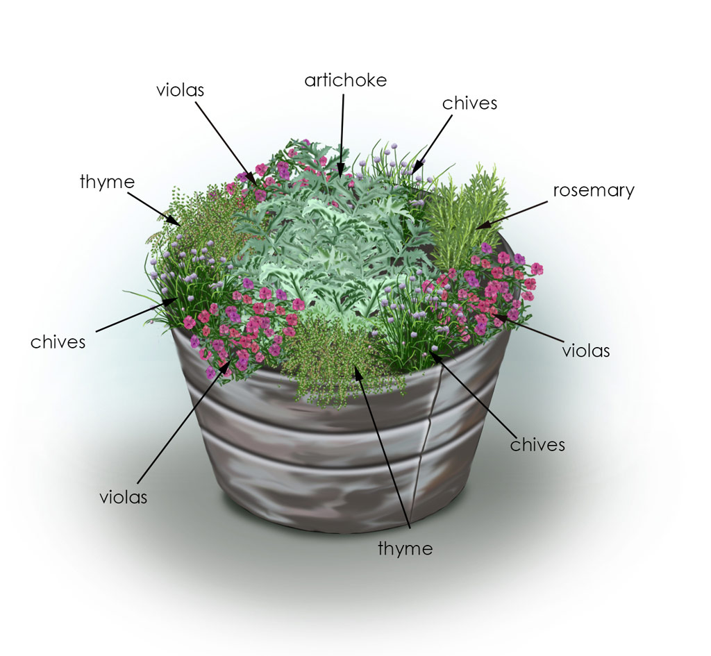 Herb Container Ideas Herbs And Veggies In Containers Delicious And Convenient