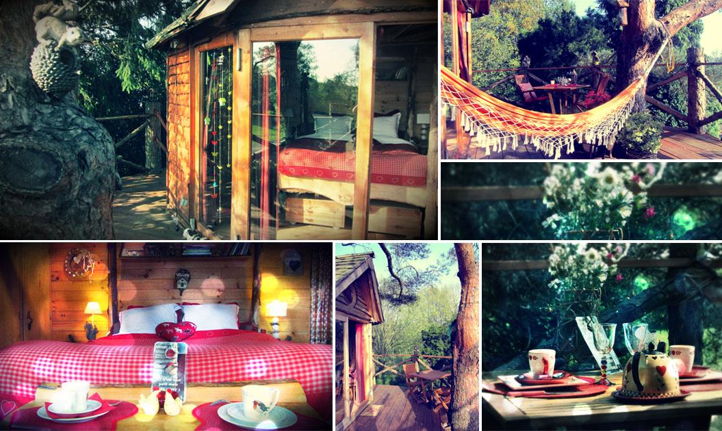 Please surprise me la cabane des amoureux - Hotel insolite belgique ...