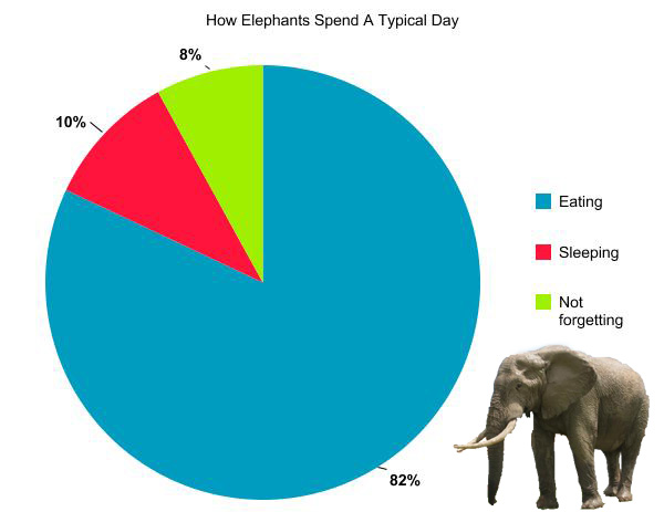 How Animals Spend A Typical Day (CHARTS) Pleated Jeans