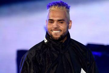 Chris Brown enfrenta seis meses de prisión, por posesión de animales exóticos. Cusica Plus.