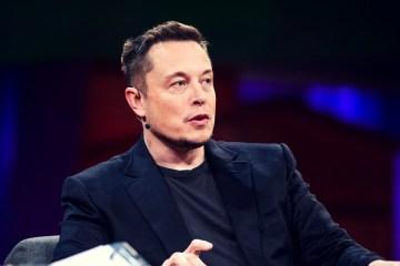 Elon Musk lanza un sencillo de rap dedicado a Harambe. Cusica Plus.
