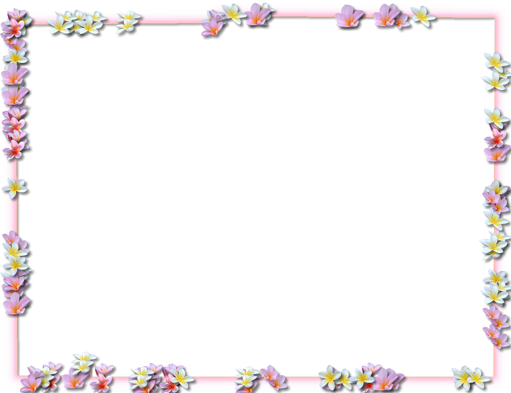 Png Flower Border Black Flowers Borders Png Transparent Flowers Borders Png Images Pluspng