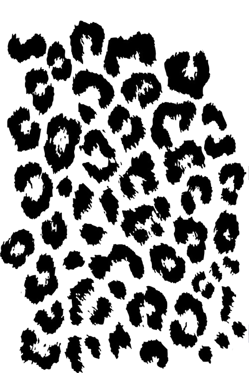 Animal Print Wallpaper Border Leopard Print Png Transparent Leopard Print Png Images