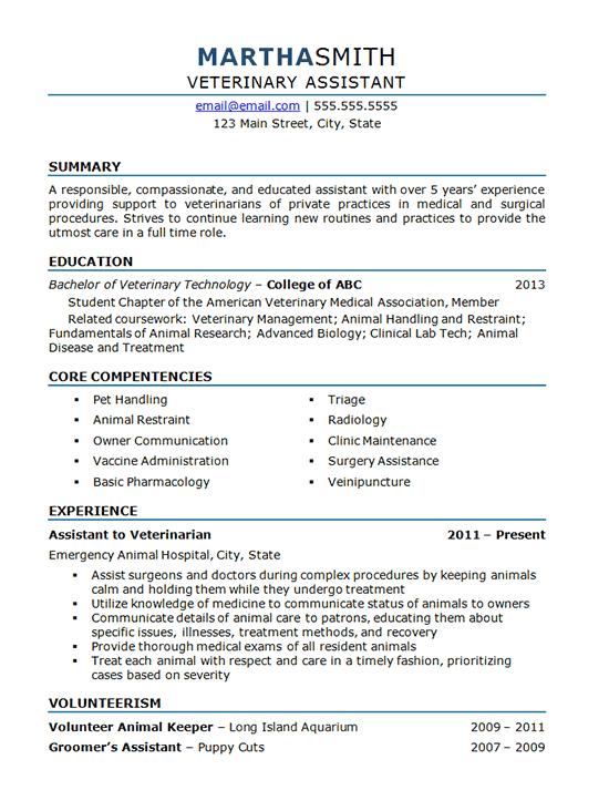 resume format vet