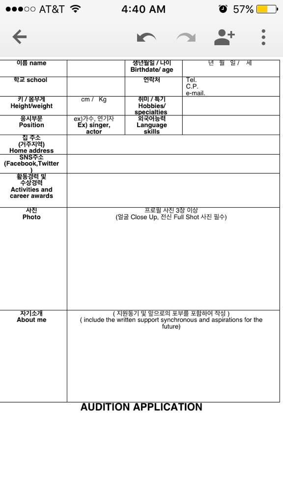 Pledis Auditon K-Pop Amino - audition form