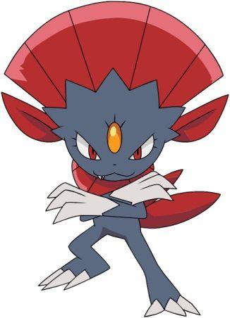 Weavile The Elements Pokémon Amino