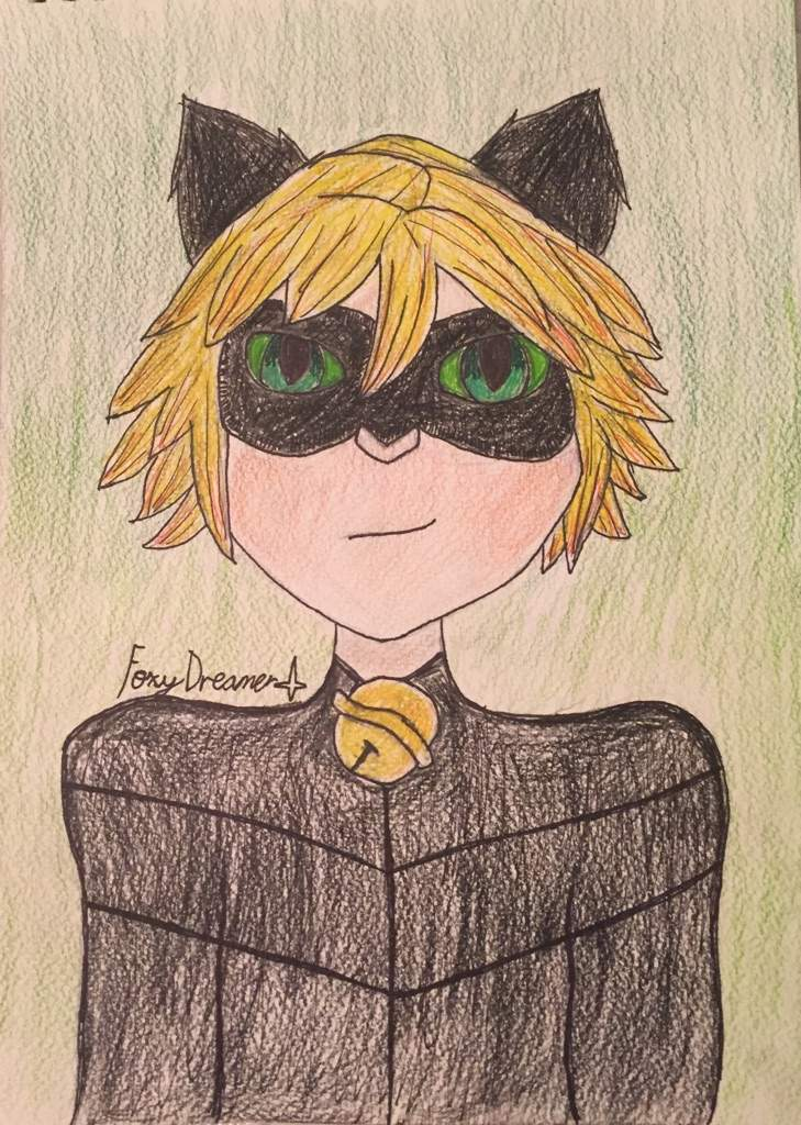 🐱Chat Noir🐱(Wish they had a black cat emoji) Miraculous Amino
