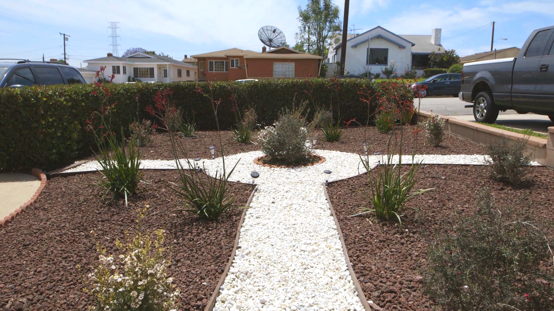 Lovely Ways To Replace Lawns During Drought Backyard Grass Redo How To outdoor Redo Backyard Grass