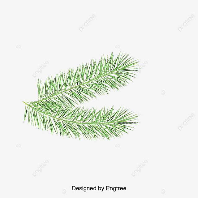 New Year Calendar Download Free 150 Happy New Year 2018 Images Free Download New Year Palm Palm Leaf Leaves Png Image For Free Download