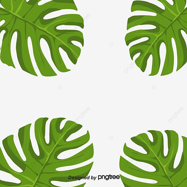 Fall Iphone Wallpaper Pattern Banana Leaves Decorative Border Green Plant Around Png
