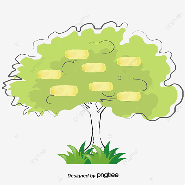 Tree Structure PNG Images Vectors and PSD Files Free Download on