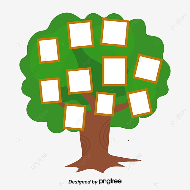 Family Tree Png, Vectors, PSD, and Clipart for Free Download Pngtree
