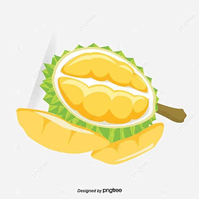 Cute Fruit Wallpaper Open Durian Durian Fruit Decorate Png And Vector For