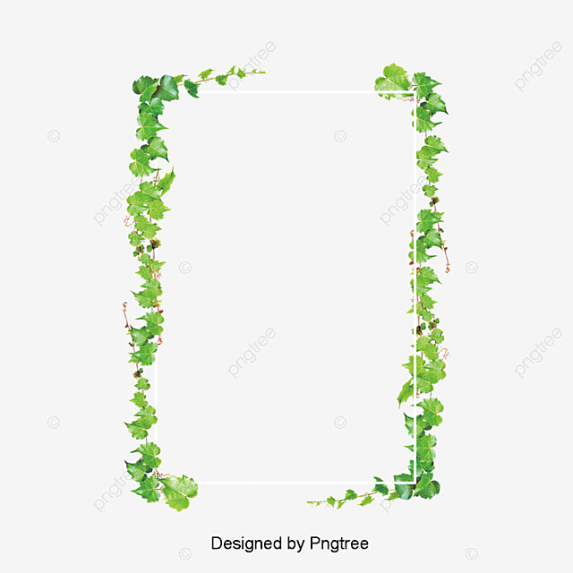 Rectangular Green Leaf Border, Frame, Rectangle, Green Leaf PNG and