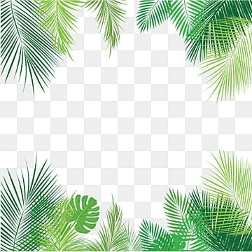 Fall Colored Background Wallpaper Tropical Leaves Png Images Vectors And Psd Files Free