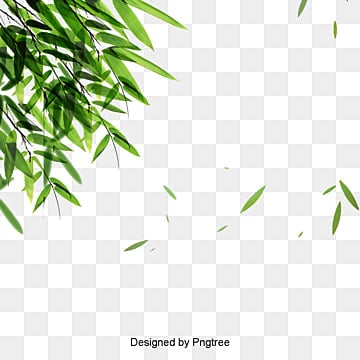 Falling Maple Leaves Wallpaper Fall Leaves Png Images Vectors And Psd Files Free