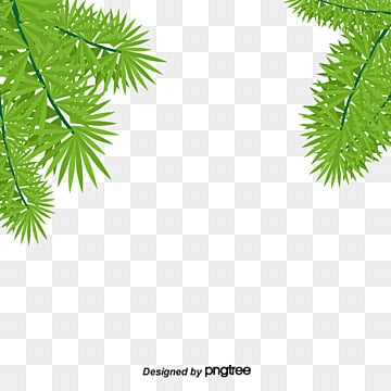 Fall Of The Leafe Wallpaper Coconut Leaves Png Images Vectors And Psd Files Free