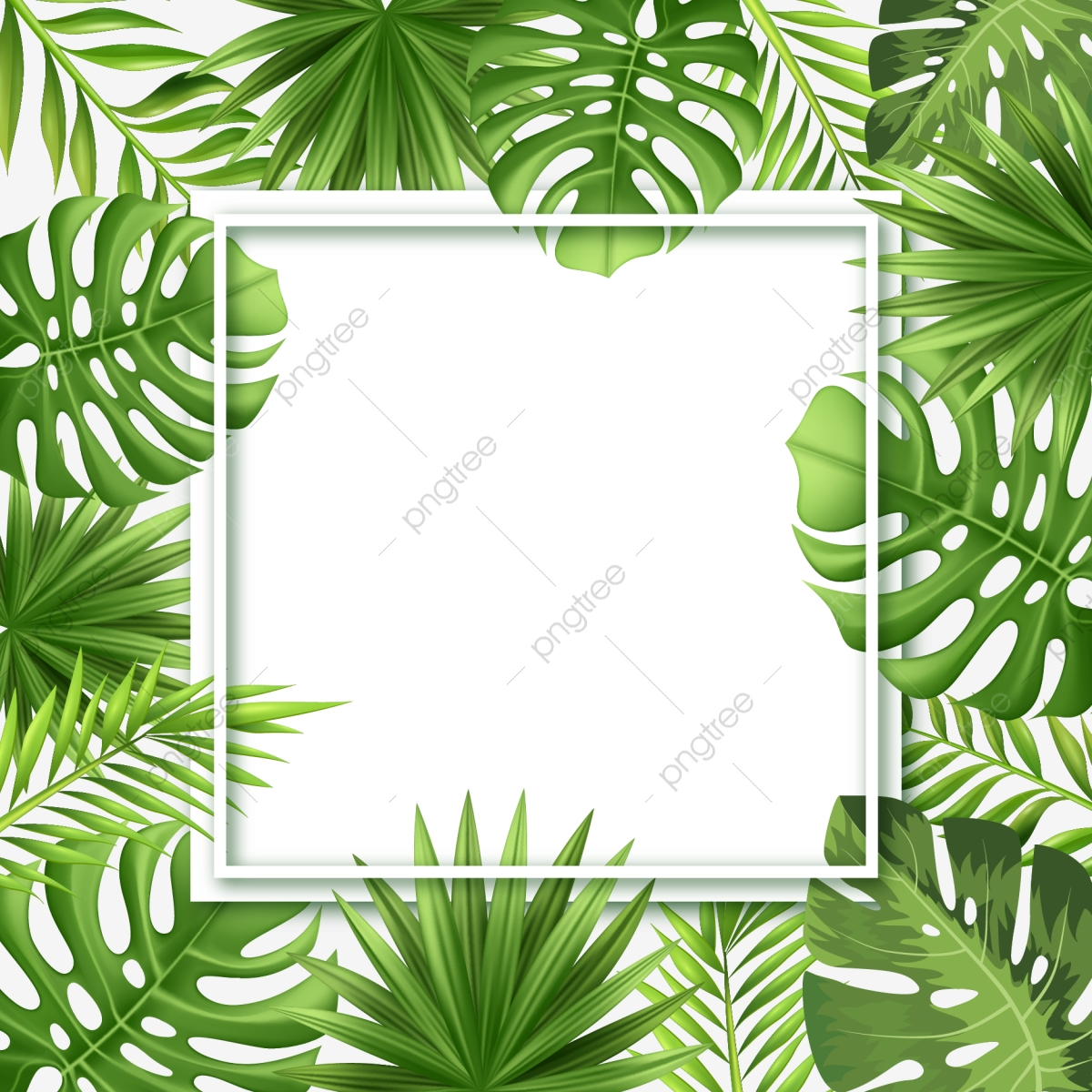 Arte Floral Vetor Creative Trendy Blank Frame With Tropical Leaves Background