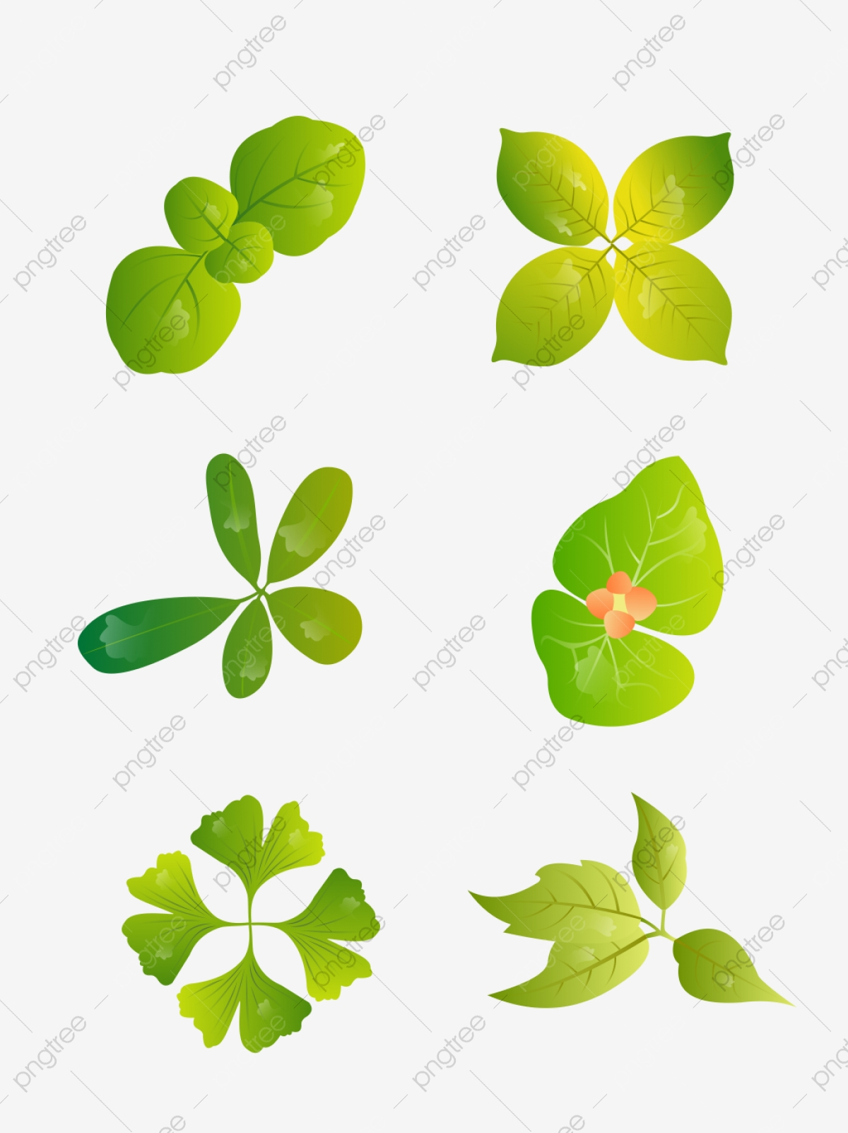 Plant Top View Png, Vector, PSD, and Clipart With Transparent Background for Free Download | Pngtree