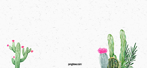 Cute Cartoon Flower Wallpaper Cactus Background Photos 1057 Background Vectors And Psd