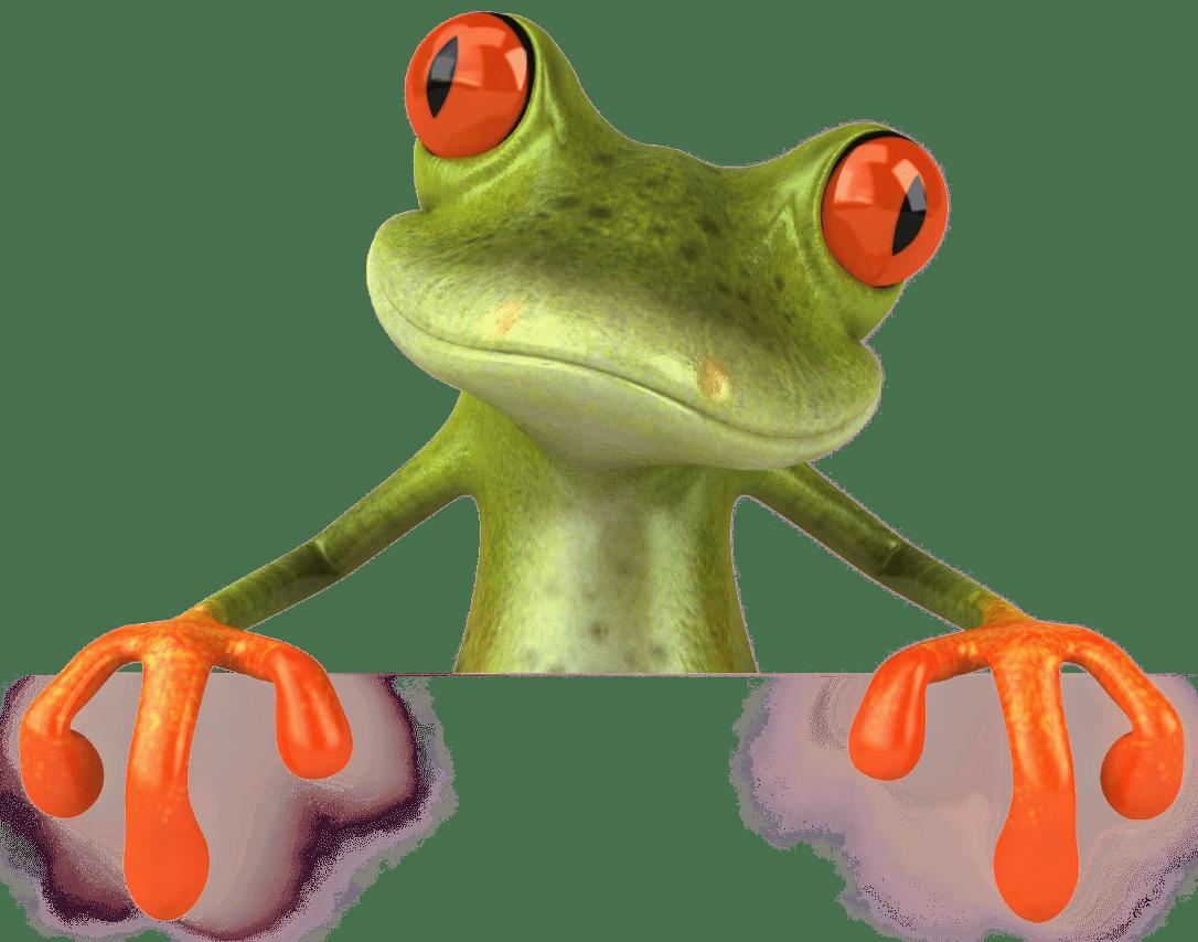 Cute Cartoon Animal Wallpaper Frog Png Image Free Download Image Frogs