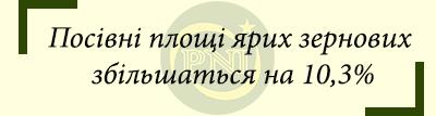 news11-01-2