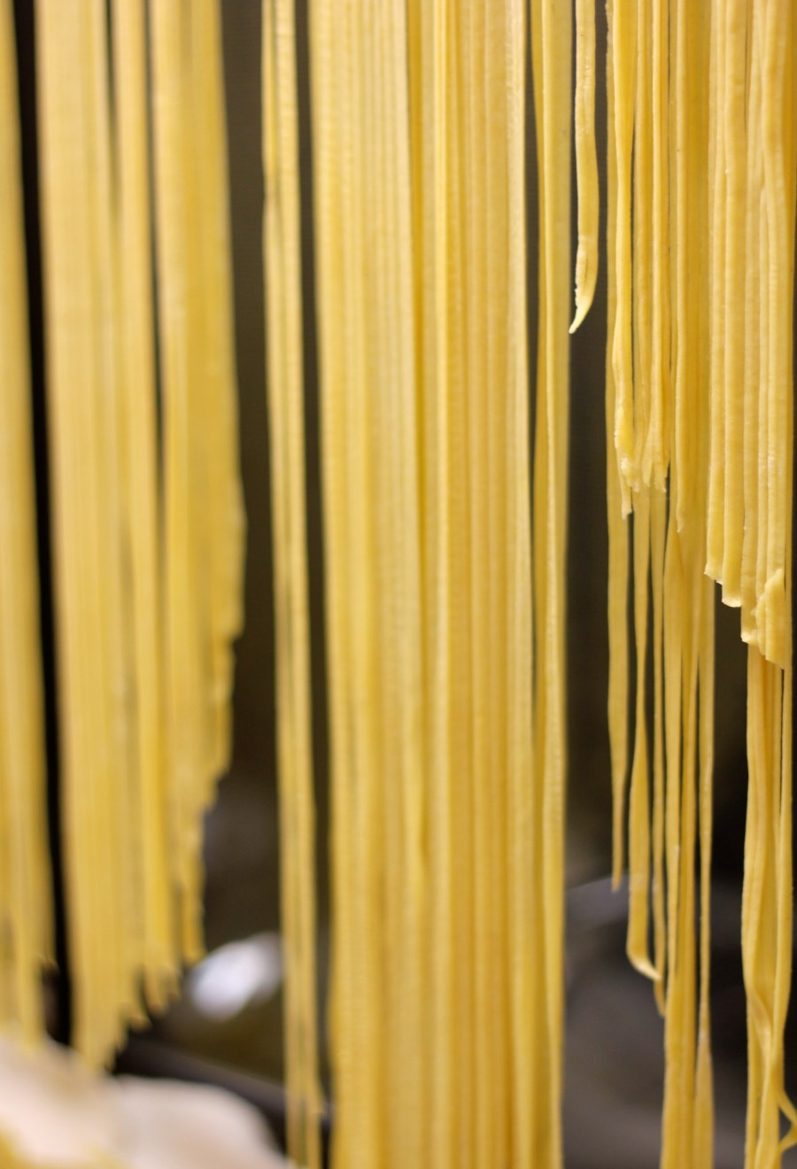 Homemade Pasta Noodles - Basic Recipe | Pocket Pause