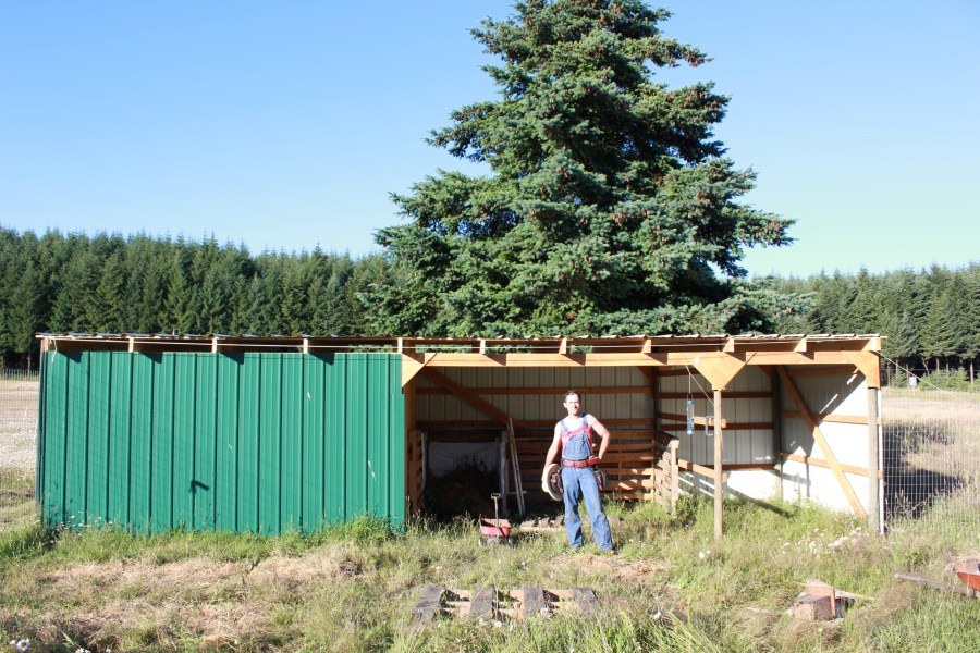 The man can build a darned good shed!