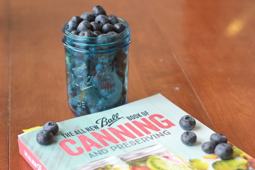 Blueberries and Ball