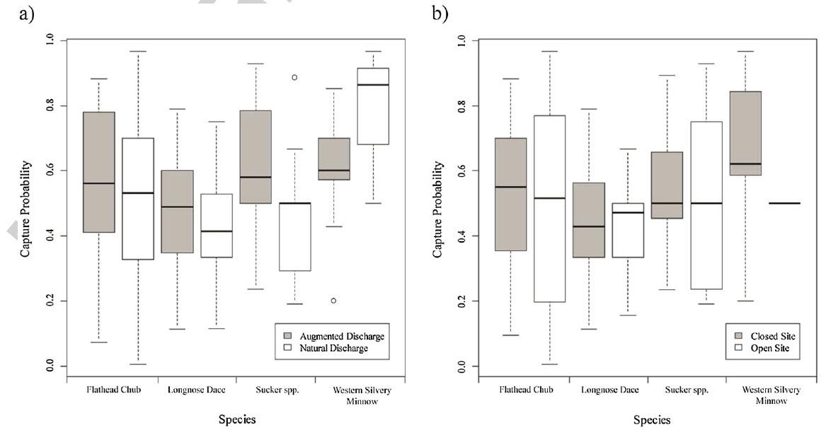 Neufeld, K*, Watkinson, D, and Poesch, MS (2016) The effect of